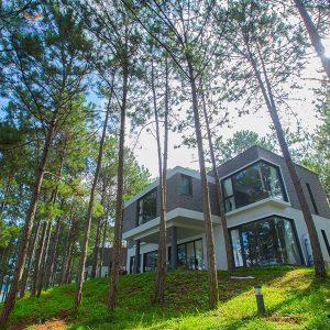 Combo tour du lịch Đà Lạt Terracotta Villa Tuyen Lam Lake Hotel Toàn Cảnh