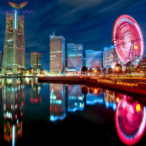 Tour Du Lịch Nhật Bản Mùa Hoa Anh Đào Tokyo