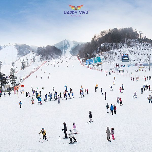 Tour Du lịch Hàn Quốc Seoul Nami Ski Resort
