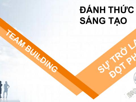 Teambuilding – Sự trở lại đột phá